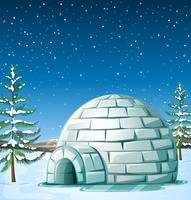 Scene with igloo on snowing day