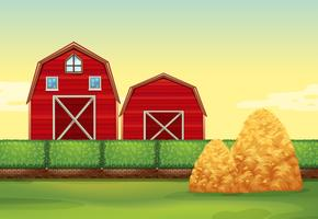 Farm scene with barns and haystacks