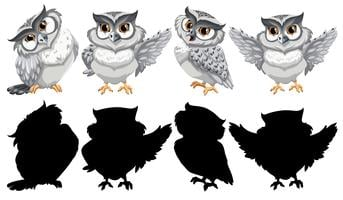 Set van uil karakter vector