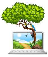 Schermo del computer con gli uccelli sull'albero
