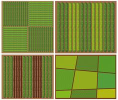 Pattern of crops from top view
