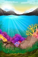Escena con bajo el oceano
