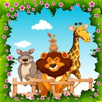 Wild animals behind the fence