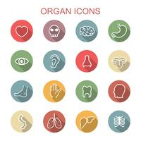 orgel lange schaduw pictogrammen