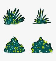 Conjunto de arbustos