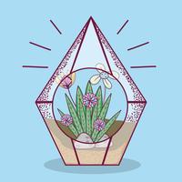 Plant inside Polyhedron glass