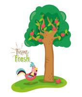 Farm fresh concept