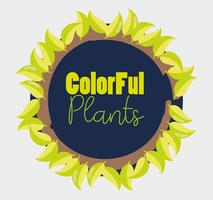 Colorful plants design vector