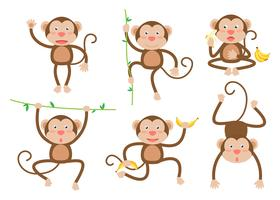 Cute little monkeys cartoon vector set in different poses - Vector illustration