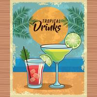 cartaz tropical do cocktail