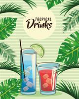 cartaz tropical das bebidas cocktail