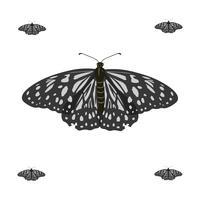 Illustrazione realistica di vettore della farfalla di volo