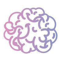 linje mänsklig hjärnanatomi till kreativa och intellekt
