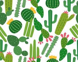 Seamless pattern of many cactus isolated on white background - Vector illustration