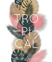 Design tropical para banner, cartaz