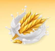 Respingo de trigo e leite. Cevada