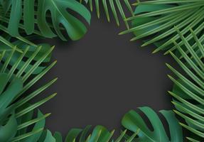 Tropical leaf background.