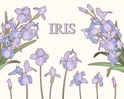 Iris morado estilo acuarela