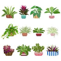 Diverse Flowers In Pots, Isolated On White Background vector