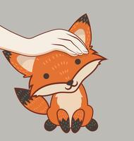 Mano acariciando la cabeza del zorro