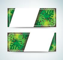 tropical leafs template background vector illustration