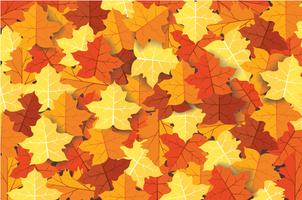 Bordo de outono deixa ilustração vetorial de fundo