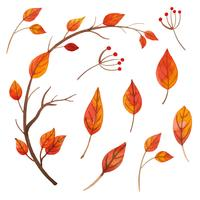 Collection de feuilles orange aquarelle