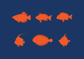 Set of Ocean Reef Fish
