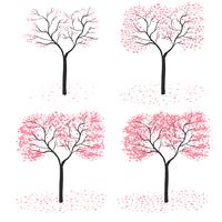 sakura tree season vector