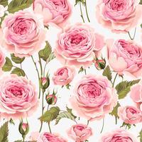 English roses seamless pattern