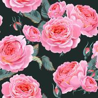 English pink roses seamless