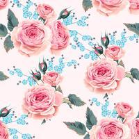 Rose inglesi senza soluzione di continuità
