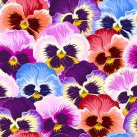 Naadloze varicolored viooltjes