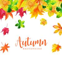 Belle foglie verdi di autunno e dell'acquerello Autumn Background