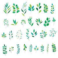 Satz verschiedene grüne Blätter