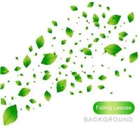 Green Falling Leaves on White Background