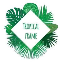 Hand drawn tropical frame vector