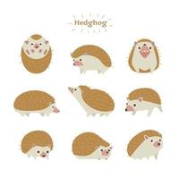 Hedgehogs in various poses.
