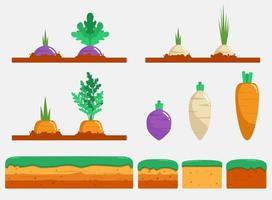 Garden vegetables set