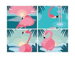 set of beautiful flamingos birds flock