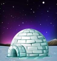 Scene with igloo at night