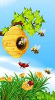 Bees and bugs flying around beehive