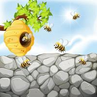 Bees flying around beehive near wall