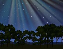 Cena da natureza com raios de lua brilhando na floresta à noite