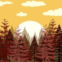 Pine forest at sunset vector