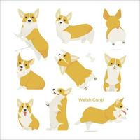 Cute Welsh Corgi set
