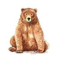 Watercolor portrait of brown bear sitting