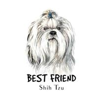 Watercolor hand drawn portrait of Shih Tzu dog