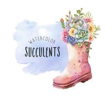 Watercolor succulents in tall rain boots on watercolor background.