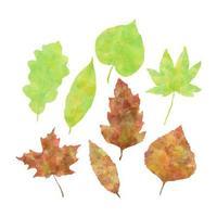 Conjunto de hojas de otoño acuarela